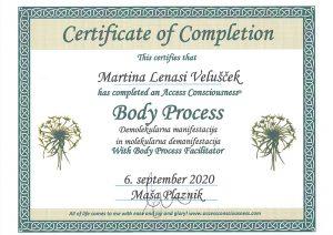 Body process diploma