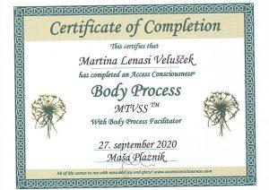 MTVSS diploma